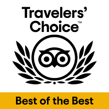 2020 tripadvisor choice award